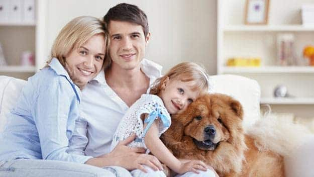 Wills & Trusts dog-young-family Direct Wills Regents Park